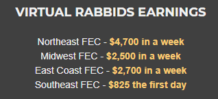 Virtual Rabbids The Big Ride Earnings